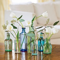 Re-using glass bottles - photo by Terri Morris