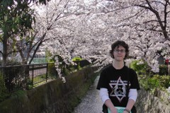 Cherry blossoms in Kyoto. Photo courtesy of Carey Finn