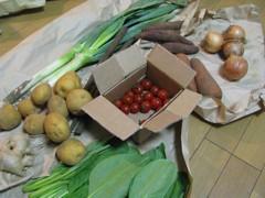 Fresh organic veggies from Warabe Mura, Japan. Photo courtesy of Carey Finn