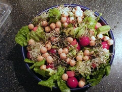 Lettuce Romaine salad with avocado - photo courtesy of moria at Flickr