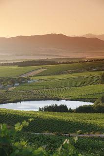Vondeling wine farm, Paardeberg